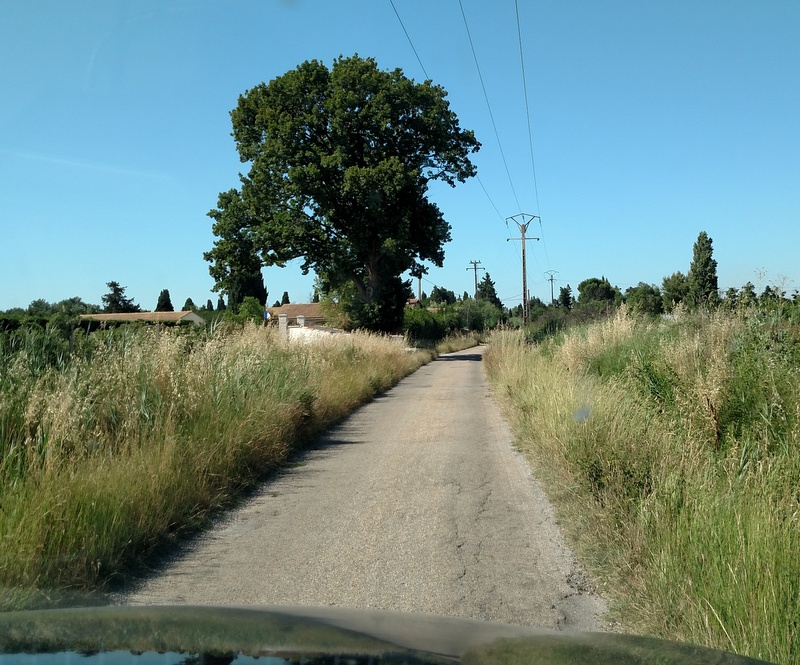 The road to our hotel. This is what France calls a two-way road! Note the width of the car hood.